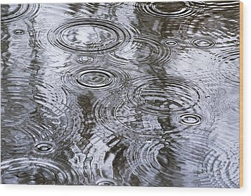 Abstract Raindrops Wood Print by Christina Rollo