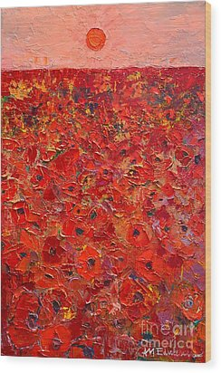 Abstract Red Poppies Field At Sunset Wood Print by Ana Maria Edulescu