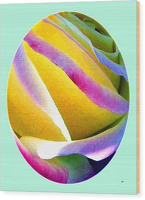 Abstract Rose Oval Wood Print by Will Borden
