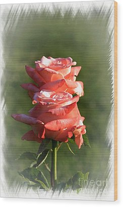 Abstract Roses Wood Print by Stefano Senise