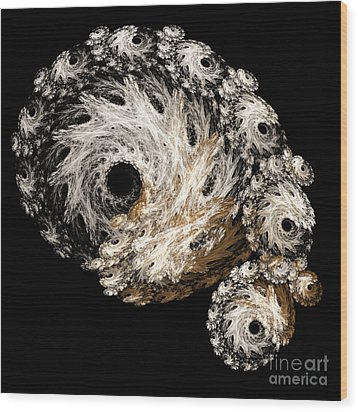 Abstract Seashell Wood Print by Andee Design