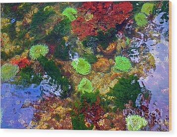 Abstract Tidal Pool Wood Print