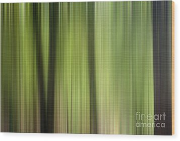Abstract Trees In The Forest Wood Print by Natalie Kinnear