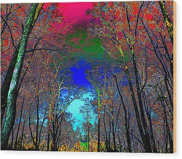 Abstract Trees Wood Print by Pete Trenholm