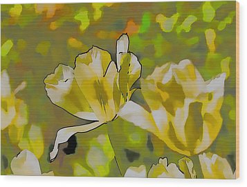 Wood Print featuring the photograph Abstract Tulip by Leif Sohlman