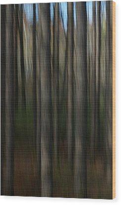 Abstract Woods Wood Print by Randy Pollard