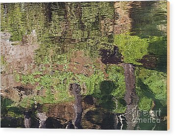 Wood Print featuring the photograph Abstracted Reflection by Kate Brown
