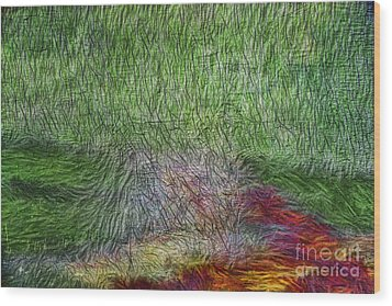 Abstraction Of Life Wood Print by Deborah Benoit