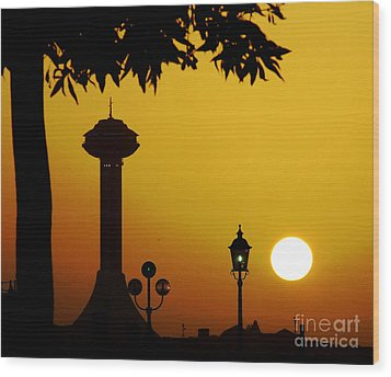 Wood Print featuring the photograph Abu Dhabi by Andrea Anderegg