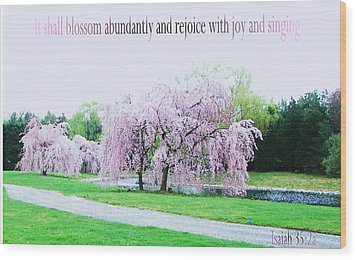 Wood Print featuring the photograph Abundant Blossom by Pamela Hyde Wilson