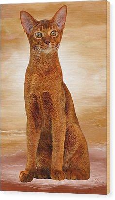 Abyssinian Cat Sorrel Color Wood Print