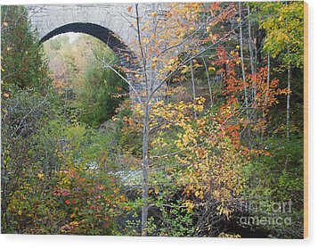 Acadia Carriage Bridge Wood Print by Chris Scroggins