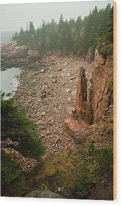 Acadia Fog At Monument Cove 4337 Wood Print by Brent L Ander