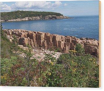 Acadia Maine Wood Print by Catherine Gagne
