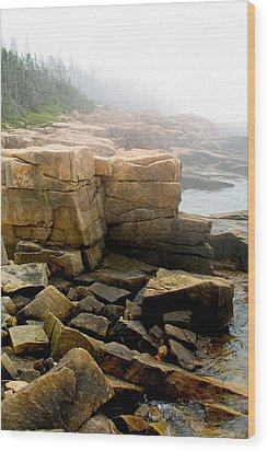 Acadia Morning 7647 Wood Print by Brent L Ander