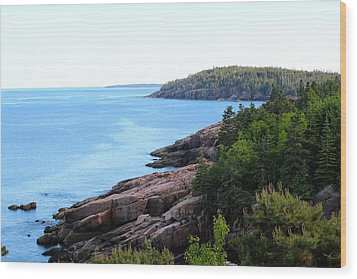 Wood Print featuring the photograph Acadia National Park  by Trace Kittrell