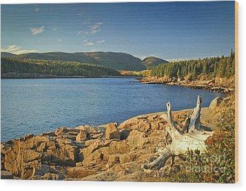 Acadia Otter Cove Wood Print by Alana Ranney