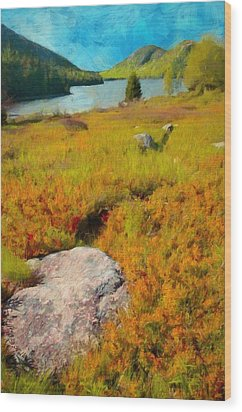 Acadia Spring Wood Print by Jeff Kolker