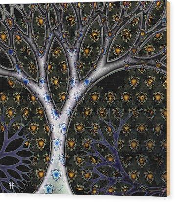 Acorn Fireflies Wood Print by Jim Pavelle