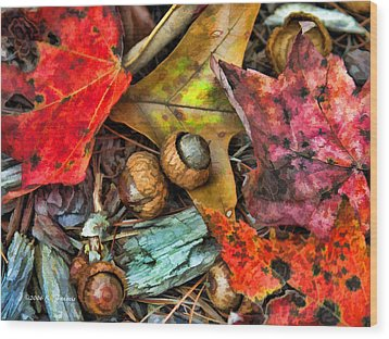 Acorns And Leaves Wood Print by Kenny Francis