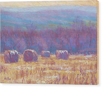 Across Dunn Valley Wood Print by Michael Camp