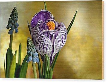 Adam Orzechowski Wood Print by Spring Time