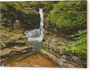 Adams Falls Wood Print by Tom Kelly