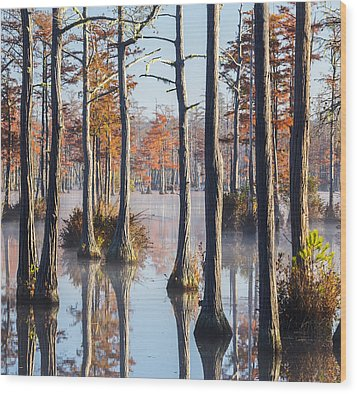 Adams Mill Pond 54 Wood Print