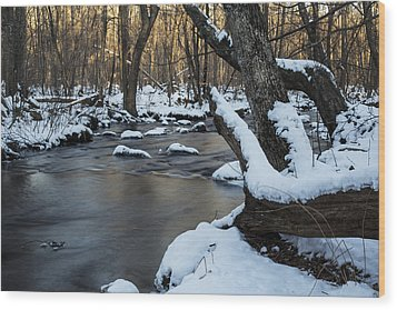 Adamsville Brook Wood Print by Andrew Pacheco
