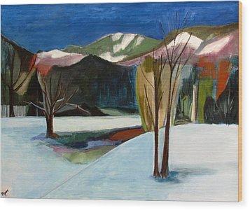 Adirondacks Wood Print by Betty Pieper