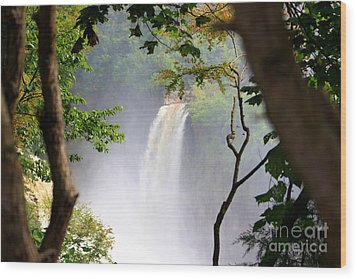Adirondacks Waterfall Wood Print by Patti Whitten