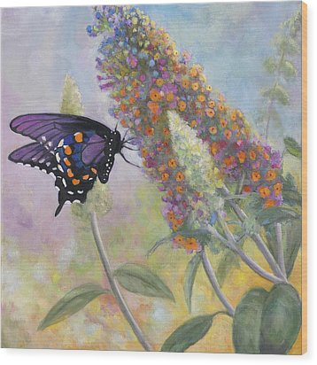 Admiral Butterfly Wood Print by John Zaccheo