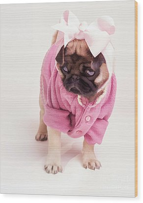 Adorable Pug Puppy In Pink Bow And Sweater Wood Print by Edward Fielding