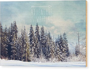 Wood Print featuring the photograph Adventure Is Waiting by Sylvia Cook