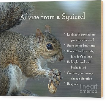 Advice From A Squirrel Wood Print