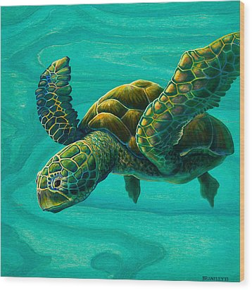 Aeko Sea Turtle Wood Print by Emily Brantley