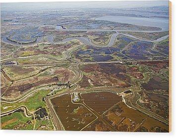 Aerial Of The California Delta Wood Print