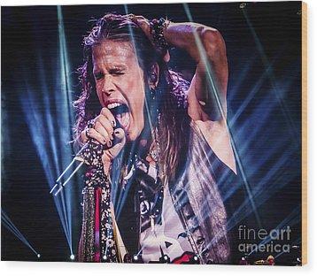 Aerosmith Steven Tyler Singing In Concert Wood Print by Jani Bryson