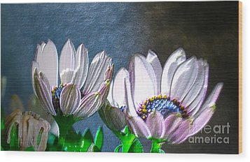African Daisy Detail Wood Print by Donna Brown