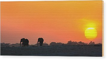Wood Print featuring the photograph African Elephant Sunset by Amanda Stadther