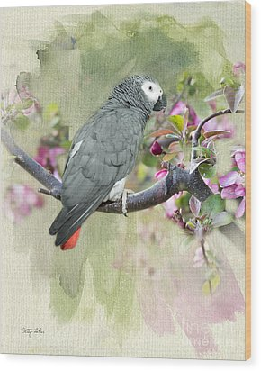 African Gray Among The Blossoms Wood Print