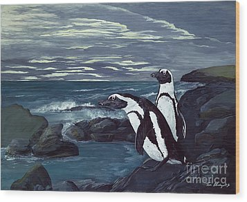 African Penguin Wood Print