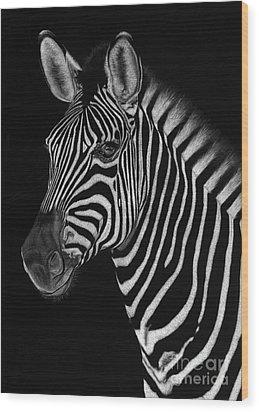 African Stallion Wood Print by Sheryl Unwin