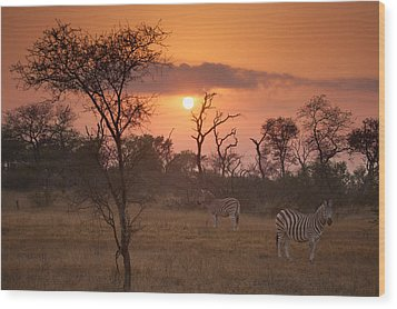 African Sunrise Wood Print by Craig Brown