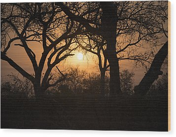 African Sunset Wood Print