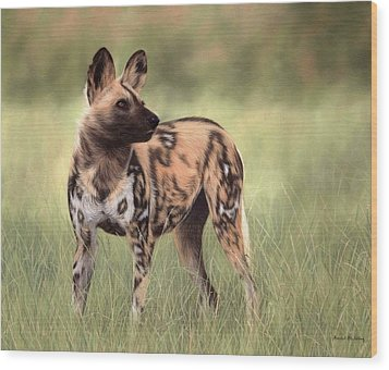 African Wild Dog Painting Wood Print by Rachel Stribbling