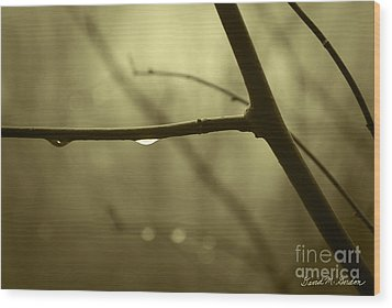After It Rained Wood Print by David Gordon