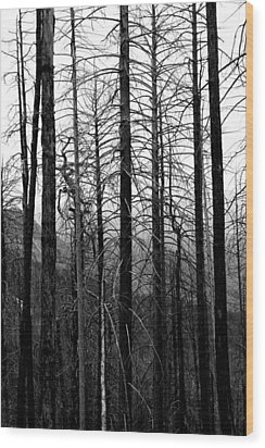 After The Fire Wood Print