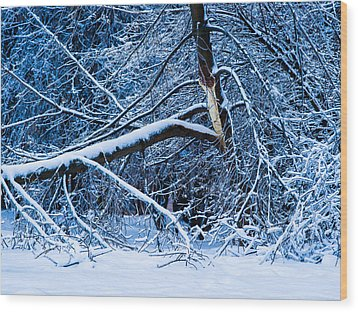 After The Icy Rain - Featured 3 Wood Print by Alexander Senin