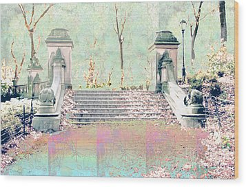 After The Rain In Central Park Wood Print